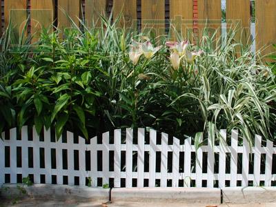 Забор декоративный №2 ЗД-3000.280-ПП пластиковый  белый 8302-Б