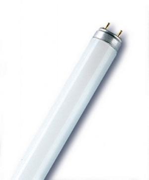 Лампа люминисцентная 8W/640 G5 дневного света