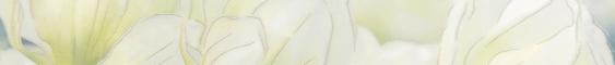 Бордюр Gracia Ceramica Rapsodia olive 60х6,5