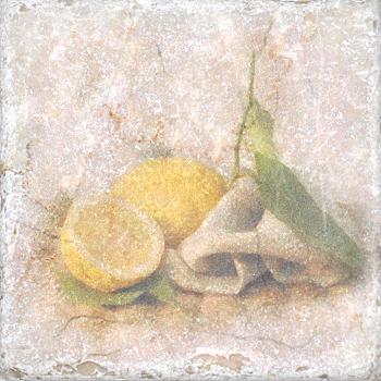 Плитка Cir Marble Style Inserto Tradition S/3 (Лимон)