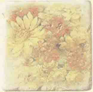 Плитка Cir Marble Age Inserto Ottocento Botticino S/3 (Ромашки)