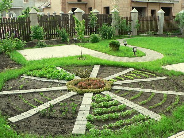 Огород дизайн своими руками фото