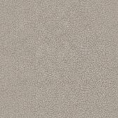 Обои WNP wallcovering D and D 65361-5
