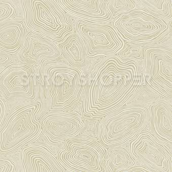 Обои WNP wallcovering D and D 65374-2