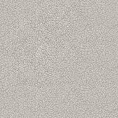 Обои WNP wallcovering D and D 65361-4